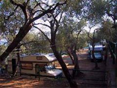 Campeggio Maralunga Srl