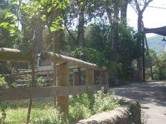 Camping Dei Pini Paluba