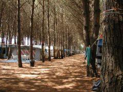 Camping Club Il Grecale