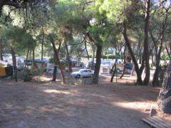 Campeggi Internazionale