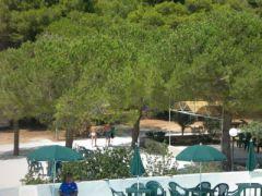 Camping Campeggio Villaggio Tiziana