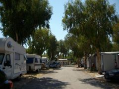 Camping Internazionale Ippocampo