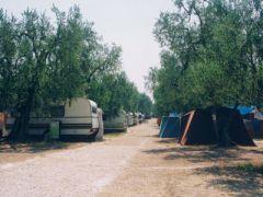 Camping Village Degli Ulivi
