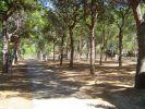 Camping Villaggio Arizona