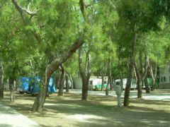 Camping Lido Del Gargano