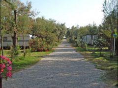 Camping Maronda