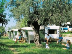 Camping Europe Garden