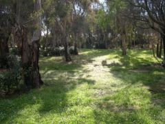 Camping Residence Nettuno