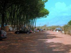Camping Pineta di Pasquale Carpino