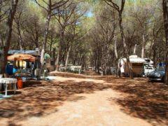 Camping Pionier Etrusco