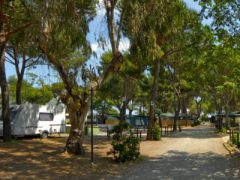 Camping Village Bocche d'Albegna