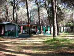 Camping Hawaii Di Frosoni Franco