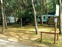 Camping Internazionale Etruria