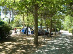 Campeggio Partaccia