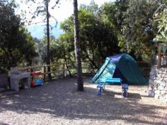 Campeggio Pineta