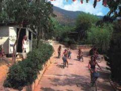Campeggio La Pineta