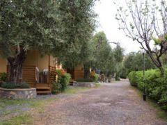 Campeggio Il Frantoio