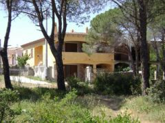 Bed & Breakfast Pineta Mare