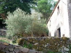 Bed and Breakfast S'histera