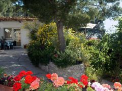 Alle Ginestre Capri Bed Breakfast