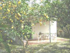 Ischia Residence Limoneto