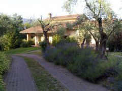 Olivanda Agriturismo Bed and Breakfast
