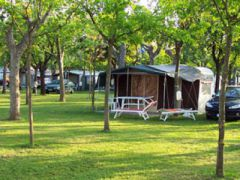 Camping Adriatico Di Visconte R. & Fabbri A. & C.